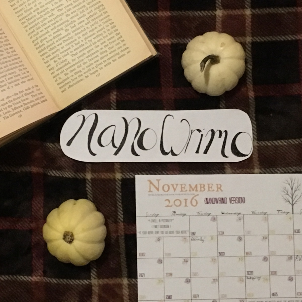 NanoWrimo Survival Kit (+ Free Printable Calendar!)
